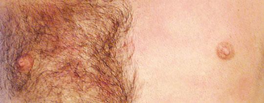 tatueringar porrstjärna mörk hud